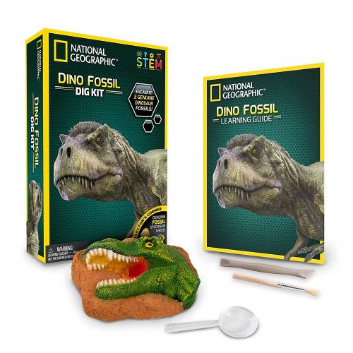 National Geographic - Dino Fossil Dig Kit