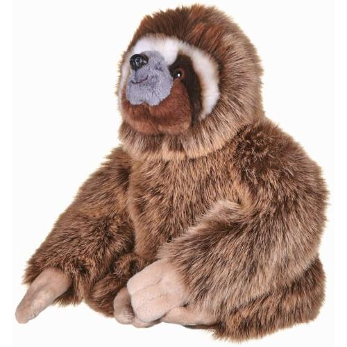 BBC Earth - Three Toed Pygmy Sloth