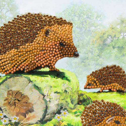 Crystal Art Card Kit - Hedgehogs