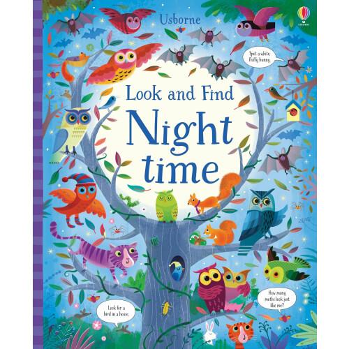 Usborne Books - Look & Find Night Time