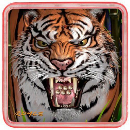 Magna balls - Tiger