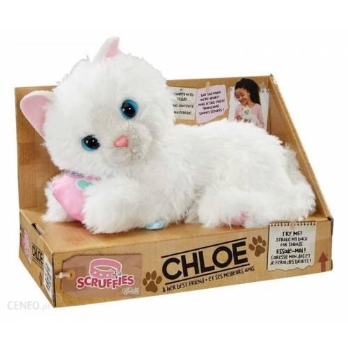 Scruffies Chloe
