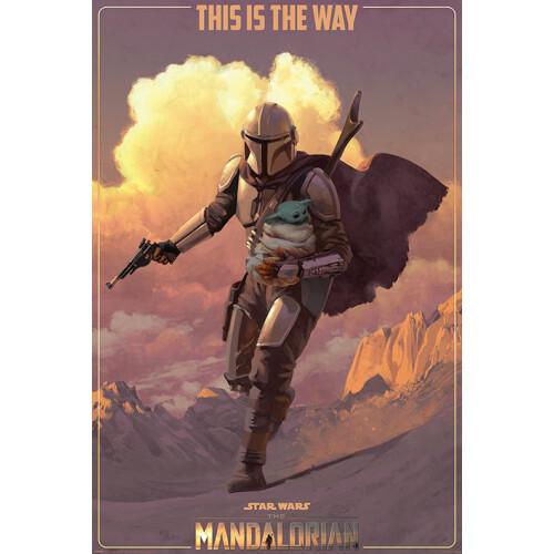 Maxi Posters - Star Wars: The Mandalorian (On The Run)