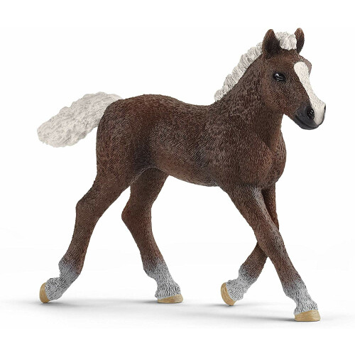 Schleich Farm Life 13899 Black Forest Foal