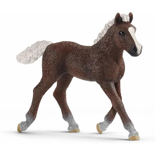Schleich Farm Life 13899 Black Forest Foal