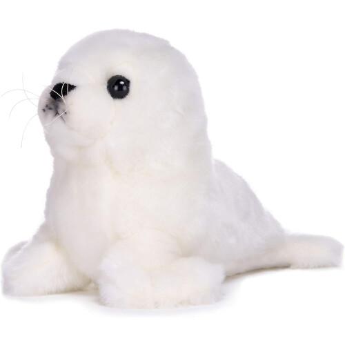 BBC Earth - Seal Pup