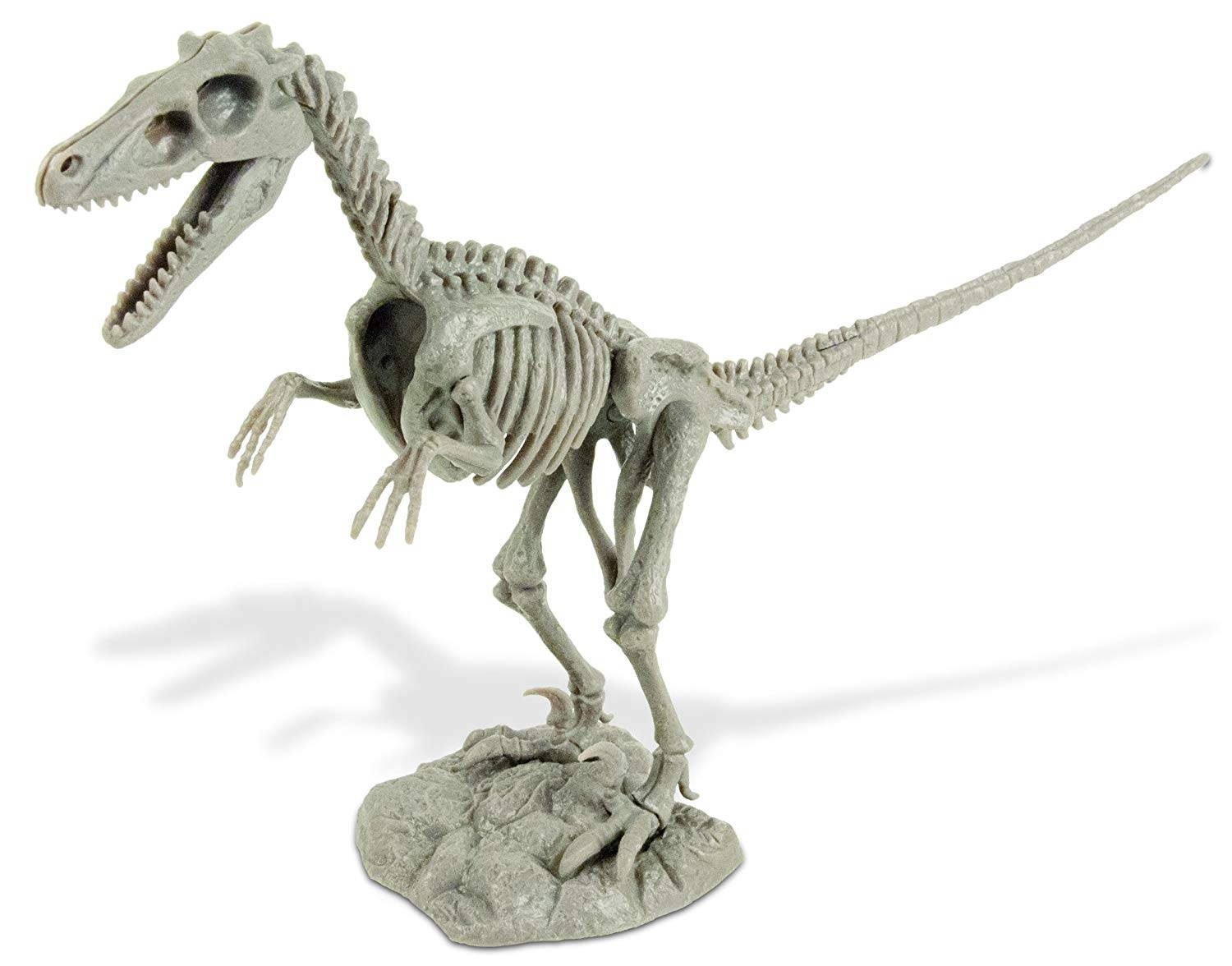 Dino Excavation Kit - Velociraptor Skeleton