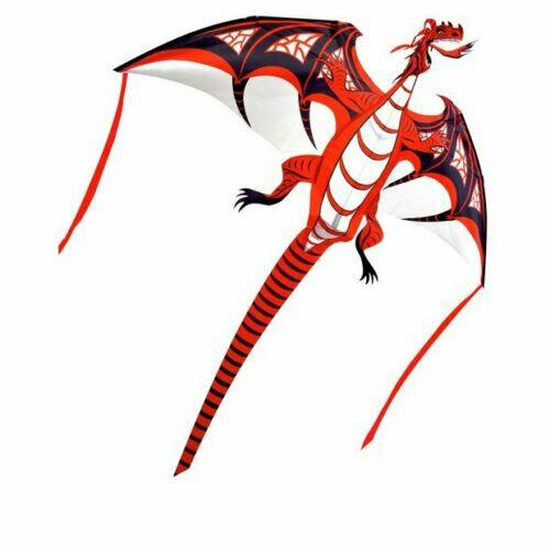 Brookite Fire Dragon Fun 3D Kite