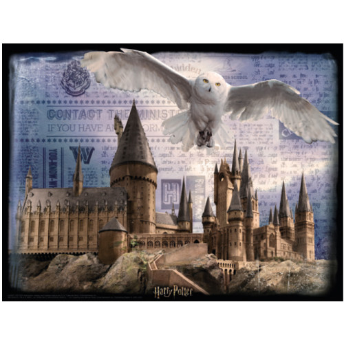 Harry Potter Super 3D Puzzle 300pc - Hogwarts & Hedwig