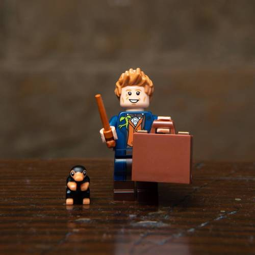 Lego Harry Potter Minifigure Fantastic Beasts Newt Scamander
